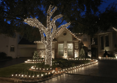House with path lighting and tree lighting