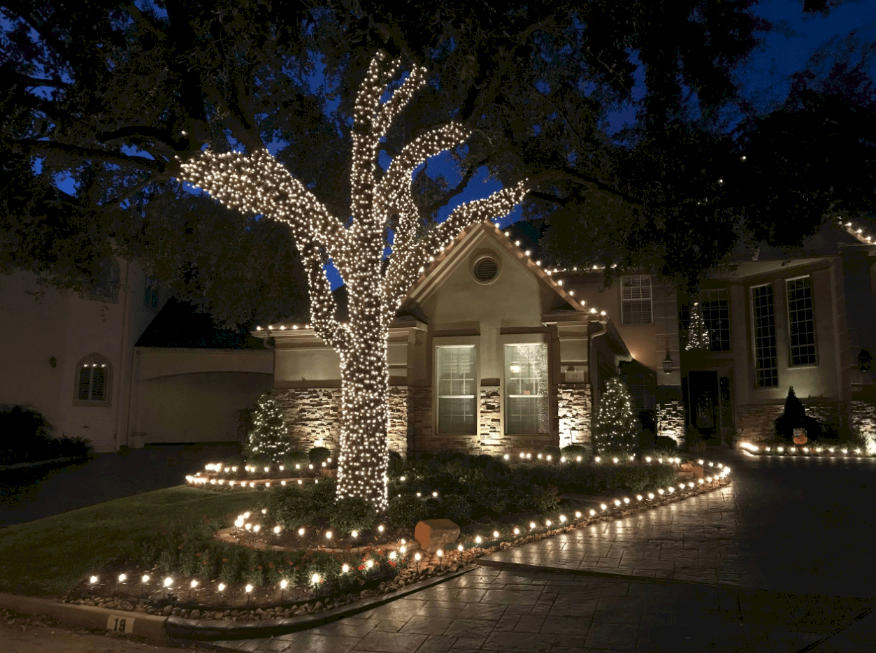House with driveway and tree lit up