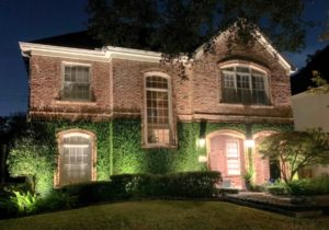 The curb appeal of a property is increased with landscape lighting that highlights the ivy growing on the side of the house