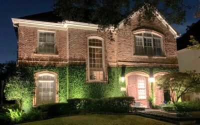Where to Place Landscape Lighting
