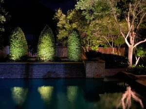 3 small green trees illuminated by uplighting sit on a ledge, reflecting in a pool of water below