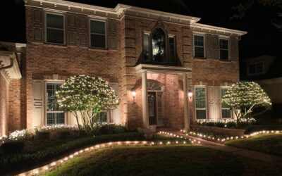 Landscape Lighting For Winter